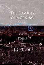 The Damages of Morning -- additional information